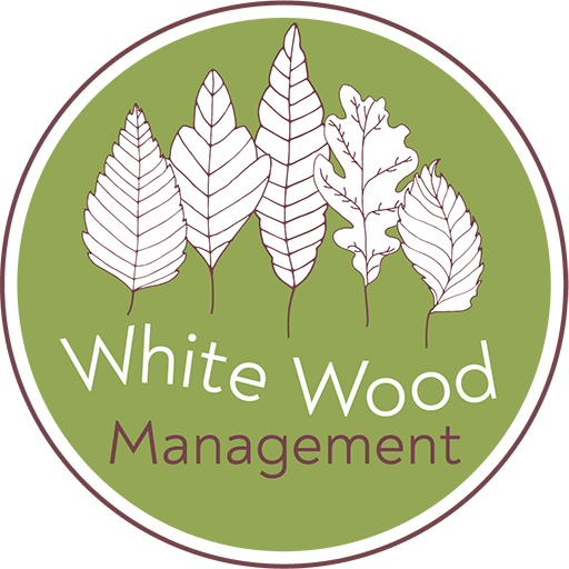 White Wood Management